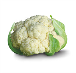 Fresh cauliflower. Vector illustration.