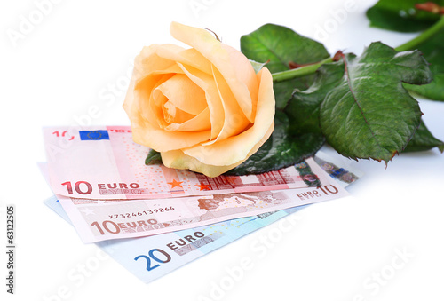 Beautiful rose and money, isolated on white