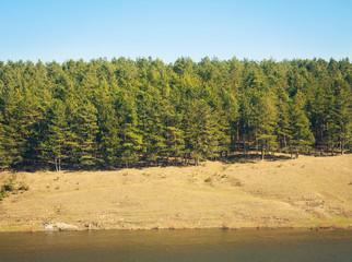 Beautiful landscape of pine forests and beautiful rivers