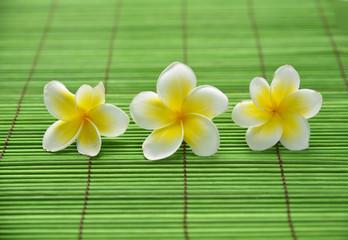 Three frangipani flower on green mat