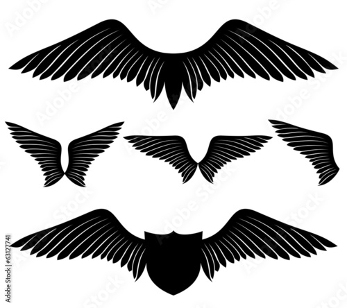 Vector set. Wings.