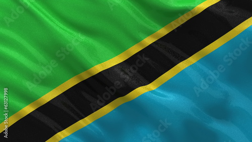 Flag of Tanzania waving in the wind - seamless loop