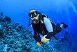 Scuba Diving instructor leads a group of divers
