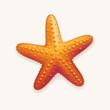 Starfish - 63135720