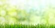 Hintergrundmotiv Frühlingsstimmung