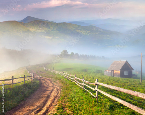 Beautiful summer landscape in a mountain village.