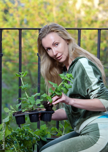The young woman and box with petunia flowers seedling