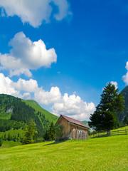 Holzhütte auf der Alm