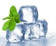 Leinwanddruck Bild - ice cubes and mint
