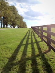 Countryside, horse farm