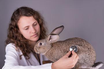 a female vet holding a rabbit