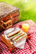 Summer picnic sandwiches