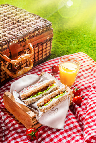 Fotobehang Picknick Summer picnic sandwiches