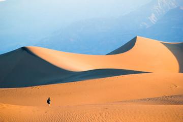 Desert Dunes, Death Valley, California