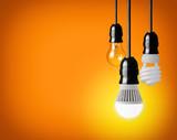 hanging tungsten light bulb, energy saving and LED bulb