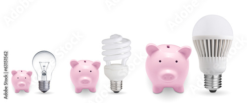 Piggy banks and different light bulbs. Concept for saving money