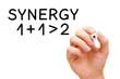 Synergy Concept