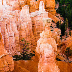 Bryce Canyon, Thor's Hammer