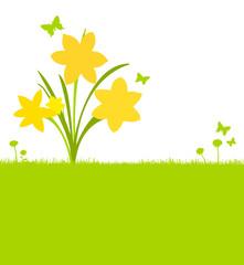 Wiese Blumenstraß Narzissen
