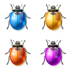 Set of multicolored fictional beetles, beetle vector icons
