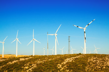 Wind Turbines at farmland in summer