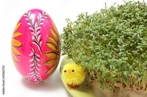 Easter chicken and painted egg with green watercress