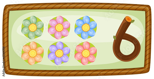 A frame with six flowers