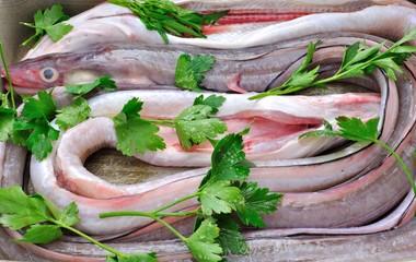 Piatto di pesce. Anguilla