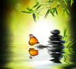 canvas print picture - exclusive delicate concept - butterfly on water in garden