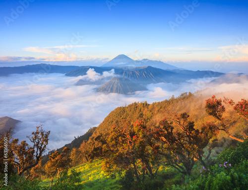 Foto op Plexiglas Indonesië Bromo volcano at sunrise, East Java, Indonesia