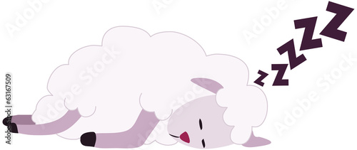White Sheep Sleeping