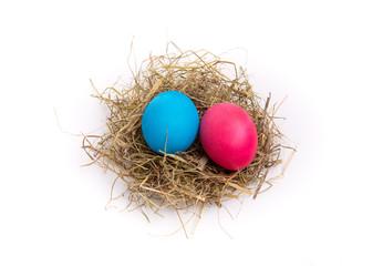 Osternest mit einem roten und blauen Ei