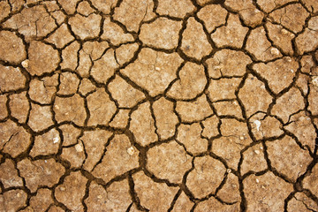 cracked land background
