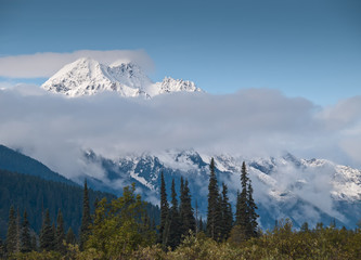 Cloudy view of a snowy glacial peak with forest