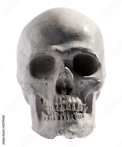 Model of a human skull isolated on white
