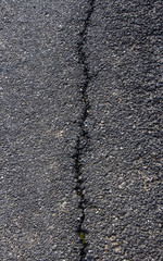 Crack in Asphalt