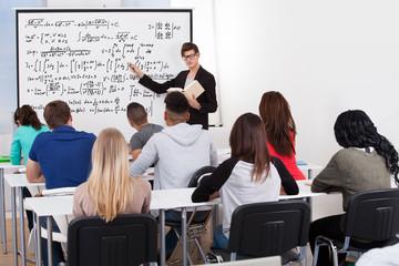 Teacher Teaching Math Formulas To College Students