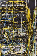 Tangled Network