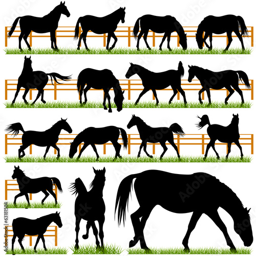 Set of 16 Vector Horses Silhouettes