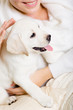 Closeup of labrador puppy on the hands of woman