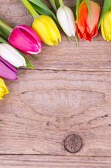 Bunte Tulpen auf Holz