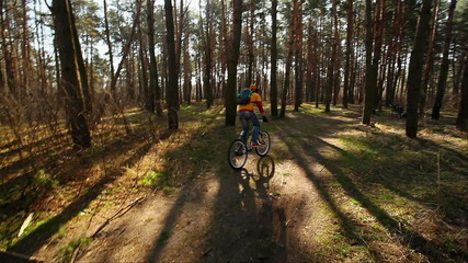 cyclist rides on the morning wood