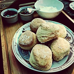 scones with jam and cream for afternoon tea