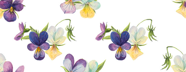Seamless pattern of violets. Violets background