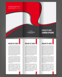 Vector empty trifold brochure print template red design poster