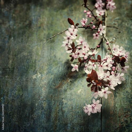wiosenne-kwiaty-wisni
