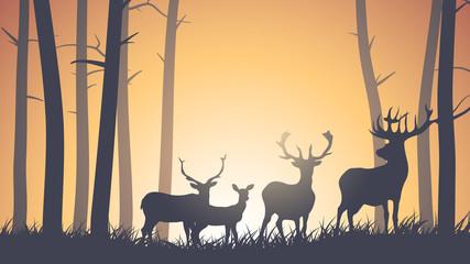 Horizontal illustration of wild animals in wood.