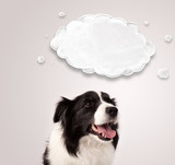 Cute border collie with empty cloud - 63199364