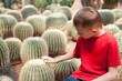 Boy touching  prickly cactus