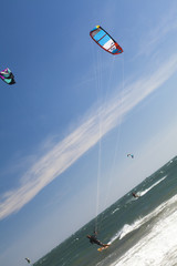 Kite surfers in the sea